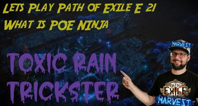 what is poe ninja